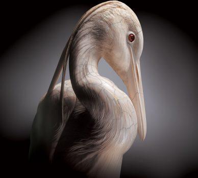 Egret – (Meiji Period – Late 1800's)
